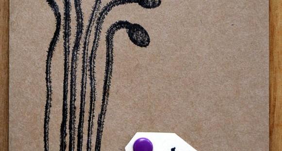 Pod Hugs, Robyn Wood, Purple Salt